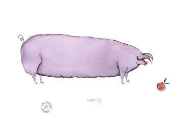 Welsh Pig